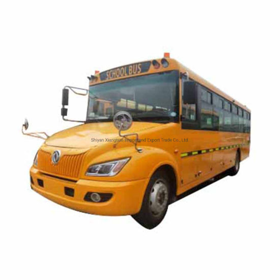 Dongfeng New Diesel Euro 3 Stop Sign 54 Seats School Bus Price pictures & photos