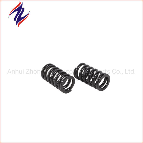 High Quality Electrophoresis Spiral Coil Compression Spring for Machines