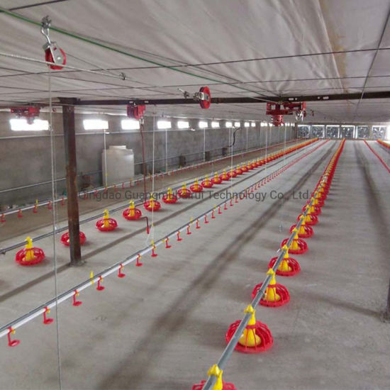 Farm, Flat Raise, Cage Raise, Breed Chicken, Broiler Chicken with Automatic Feed Line Automatic Feed Plate