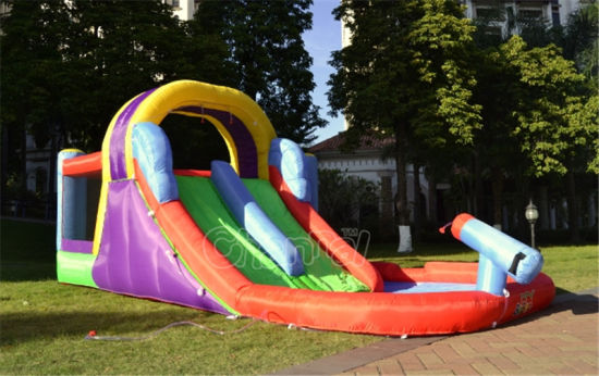 Residential Inflatable Water Slide (QW105) pictures & photos