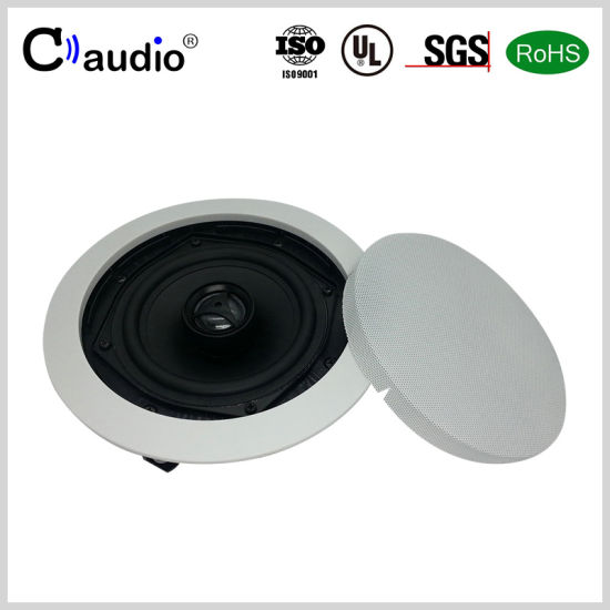 5.25 Inch 2 Ways Mini Speaker with PP Cone pictures & photos