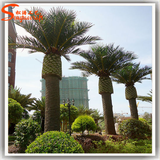Outdoor Decoration Large Artificial Date Palm Tree Pictures Photos