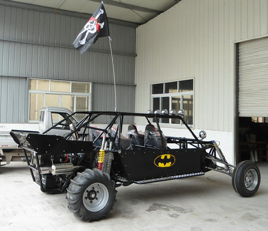 3000cc Sand Buggy pictures & photos