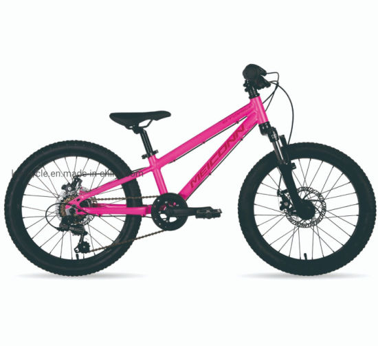 20inch 6 Speed MTB Bike/Mountain Bikes/Fat Tire Bicycles/Fat Bike Bike Sy-MB2086 pictures & photos