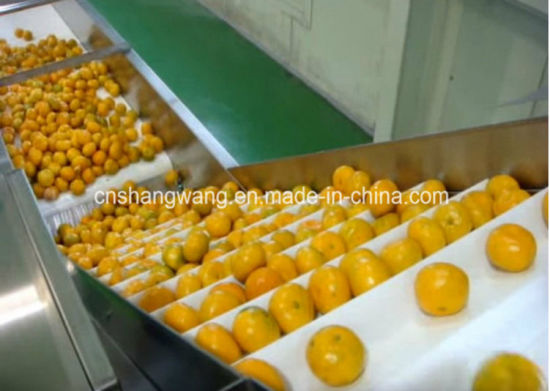 Pet Bottled High Quality Juice Beverage Filling Production Line pictures & photos