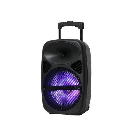 8 Inch Portable PRO Audio Active Sound Speaker Box Trolley Bluetooth Speaker pictures & photos