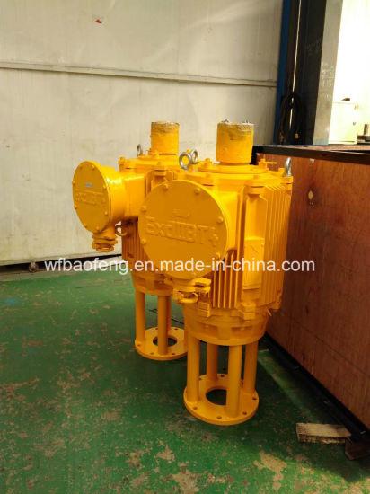 China Screw Pump PC Pump Well Pump Ground Drive Motor Device