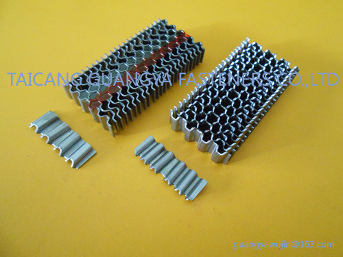 "Bea Type Corrugated Fasteners W6 Series 1/4"" Length pictures & photos"