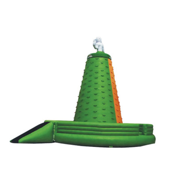 PVC/Oxford Inflatable Castle Bouncer Inflatable Combo pictures & photos