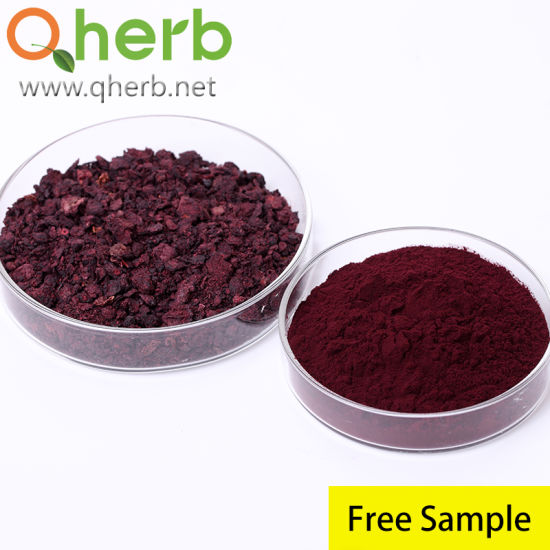 Factory Supply 25% Proanthocyanidins UV Cranberry Extract