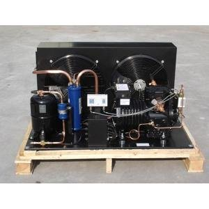 Emerson-Copeland Compressor Condensing Unit for Freezer pictures & photos