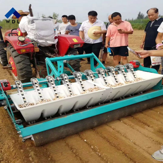 China Automatic Agriculture Garlic Planting Machine Garlic Planter