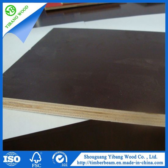 Marine/Shutting/Film Faced Plywood for Construction Using
