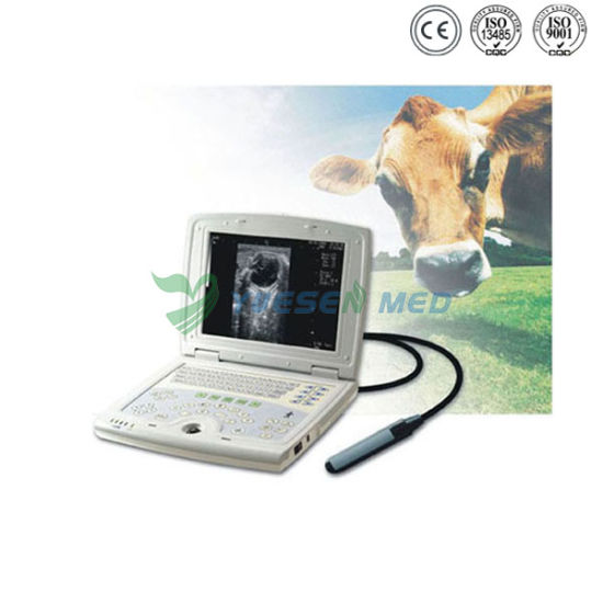 Ysb5000V Ce Approved Portable Veterinary Ultrasound Scanner pictures & photos
