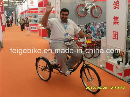 "20""/24"" Aluminum Frame Electric Tricycle with 250W Motor (FP-ETRK1801) pictures & photos"