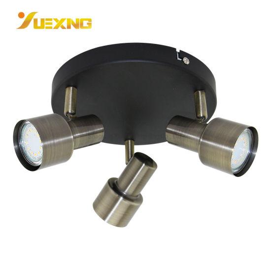 Light Multi Directional Ceiling