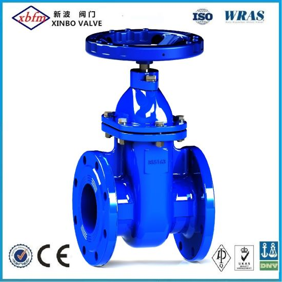 OEM/ODM Factory Stainless Steel Brass Bronze Cast Ductile Iron Gate Valve with UL CSA Ce SA TUV Dvgw Upc Acs ISO9001