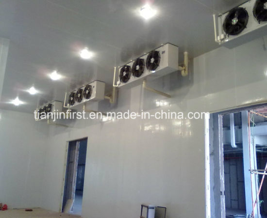 Ce Approved Food Storage Cold Room /Freezer for Seafood Fruit