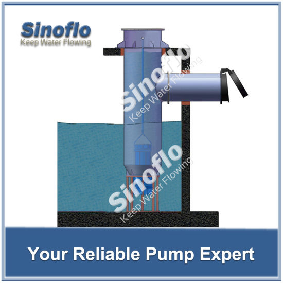 Submersible Axial Flow/Mixed Flow Pump for Agricultural Irrigation pictures & photos