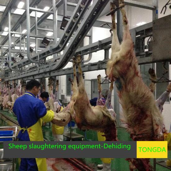 Sheep Slaughterhouse Made in China