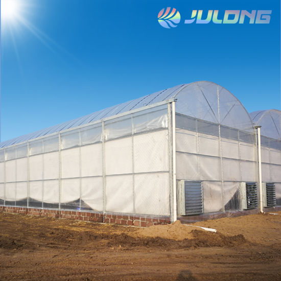 Newest Technology Imported Plastic Film Green House with Hydroponics System for Agriculture