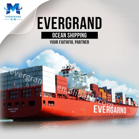 Shanghai Sea Freight Shipping to USA