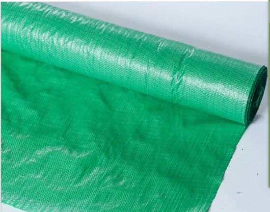 Woven Plastic Net for Greenhouse Ground Cover Dark Green pictures & photos