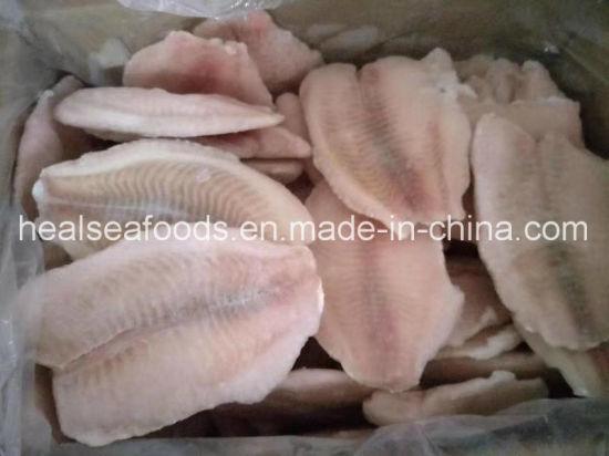 Best Seafood Frozen Tilapia Fillet for Sale