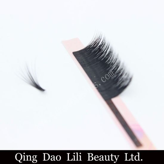 66664040df5 Private Label Volume Lashes Easy Fan Eyelashes Extensions pictures & photos