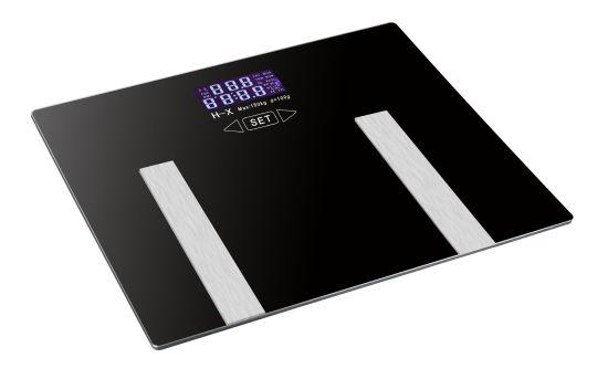 Health Fat Scale