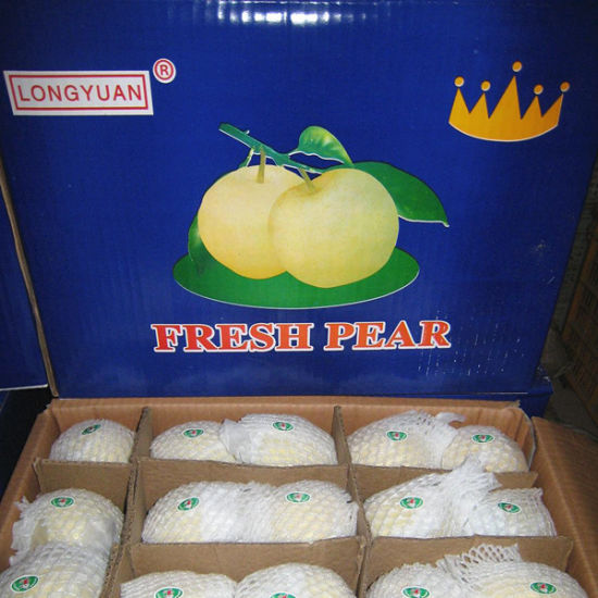 Fresh New Season Golden Pear From China pictures & photos