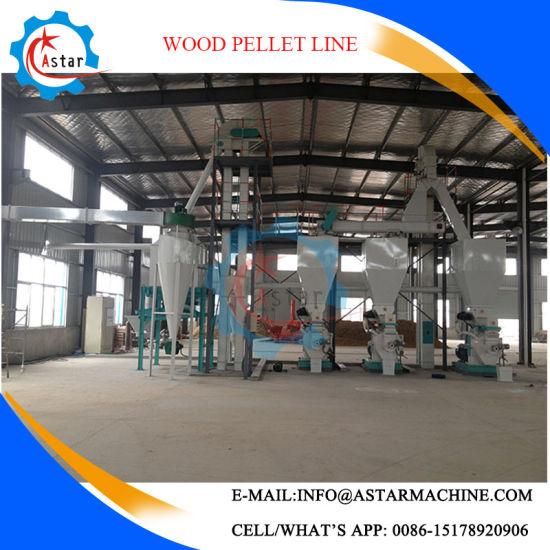 6-10mm 3t/H Wood Sawdust Pellet Line Manufacture
