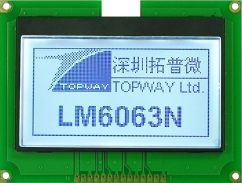 128X64 Graphic LCD Display Module pictures & photos