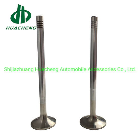 Auto Spare Parts Intake Exhaust Valve Engine for D12c