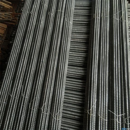 Steel Formwork Accessories Scaffolding Waterstop Tie Rod pictures & photos