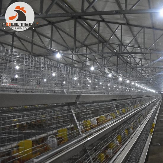 4 Tiers 216 Birds a Type Battery Small Layer Cage & Poultry Cage in Chicken Shed for Sale pictures & photos