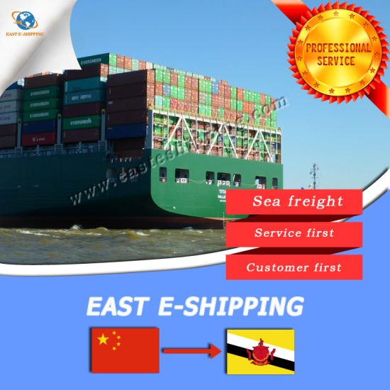 Shipping Service From Guangzhou to Muara by Sea Shipping pictures & photos