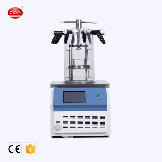 Vacuum Laboratory Freeze Dryer for Vaccine Food Fruit Herb with Factory Price