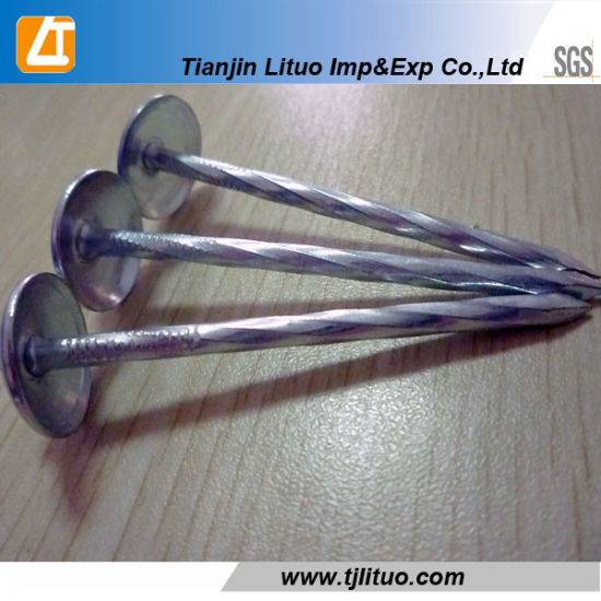 Umbrella Head Galvanized Twisted/Plain Shank Roofing Nails