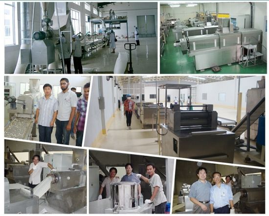 Continuous Automatic Pet Food Extruder Machine pictures & photos