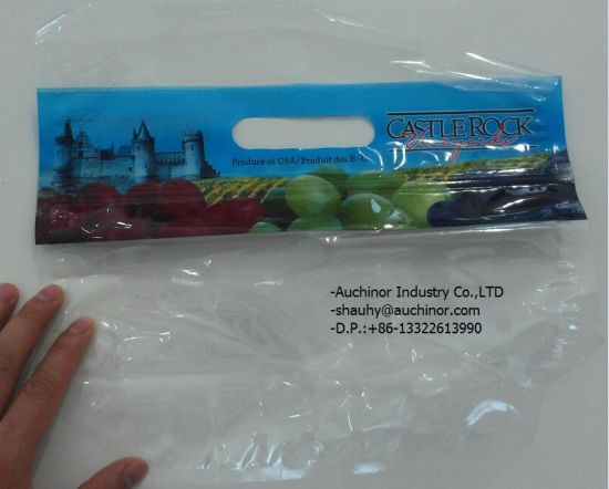 High Quality Plastic Grape Protection Bags with Punch Holes on Wicket pictures & photos