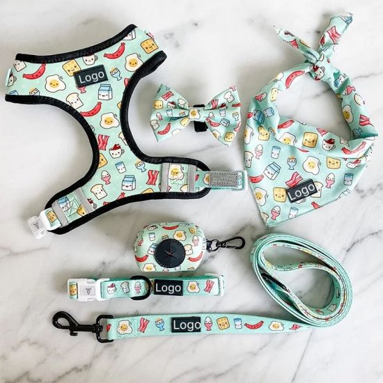 All Kinds of Design Full Sets Dog/Pets Harness Factory Price
