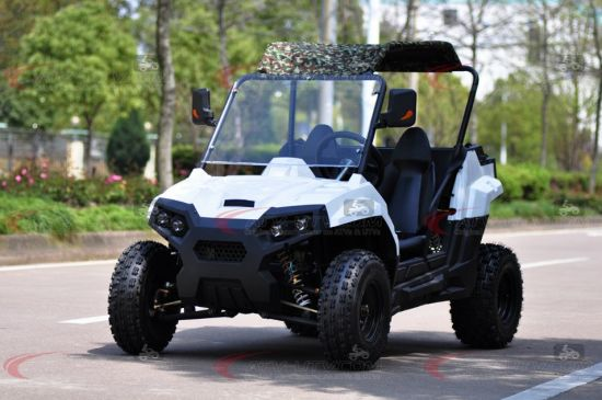 150cc and 200cc 2 Seaters 4X2 UTV Ut2001 pictures & photos