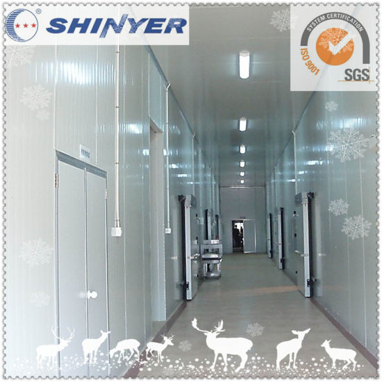 Shinyer Walk in Freezer Room for Food Storage pictures & photos
