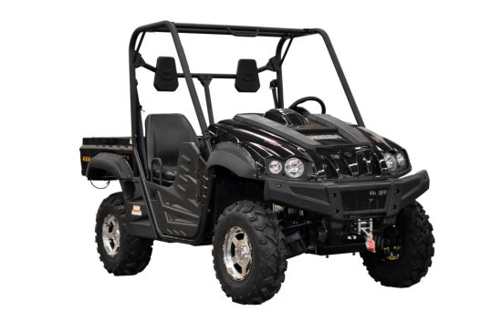UTV 4X4 Side by Side All Terrain Vehicle (ATV) Farming Vehicle UTV pictures & photos