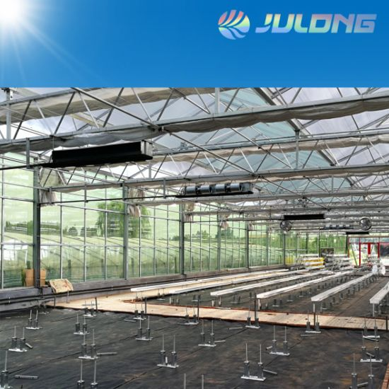 Venlo Structure Glass Greenhouse for Agricultural Planting
