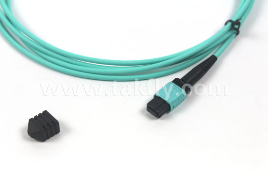 0.35dB Low Loss Takfly 12 Fiber Patch Cord MPO MTP Fiber Jumper pictures & photos