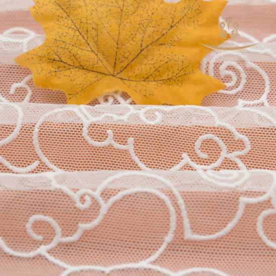 High Quality Women Dress African Lace Fabric pictures & photos
