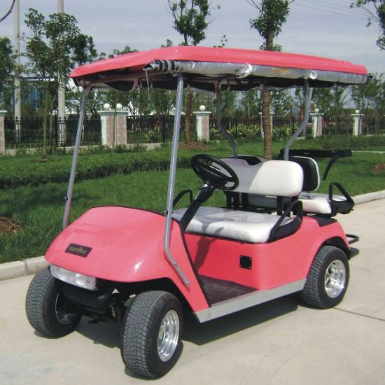Battery Powered 2 Seater Electric Golf Cart (DG-C2) pictures & photos