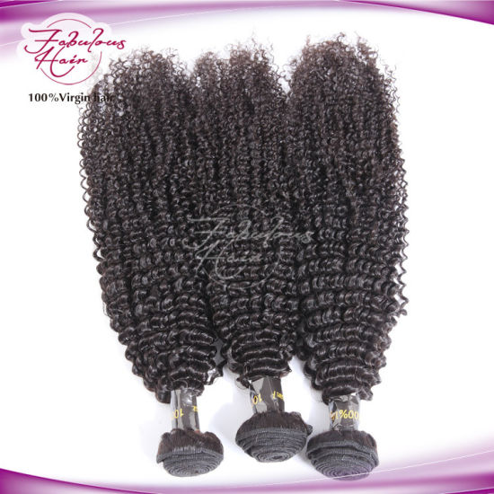 Christmas Promoting Wholesale Human Virgin Brazilian Afro Kinky Curly Hair pictures & photos